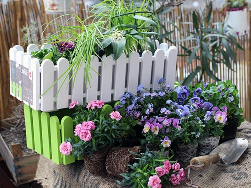 Jetzt wird's bunt! Balkon bepflanzen im Frühjahr – EMSA