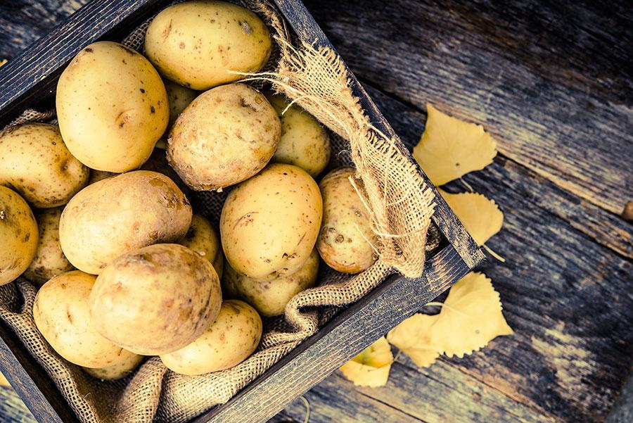 Beliebt Bevorzugt Kartoffeln richtig lagern – EMSA @PX_51
