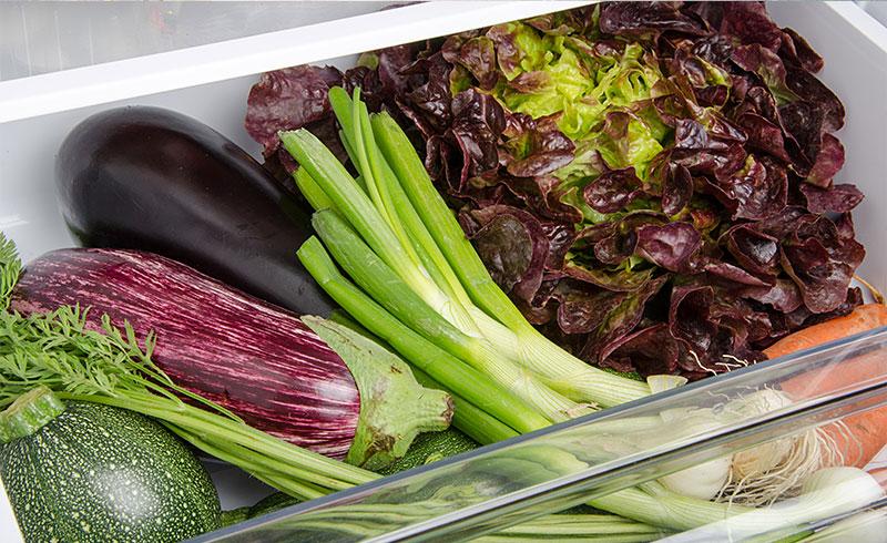 knackig statt schlapp salat aufbewahren leicht gemacht. Black Bedroom Furniture Sets. Home Design Ideas