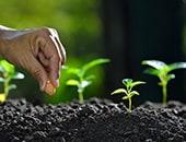 Nachhaltigkeit im Alltag