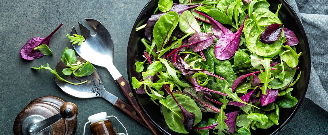 Da haben wir den Salat - Kleines Lexikon der Blattsalate