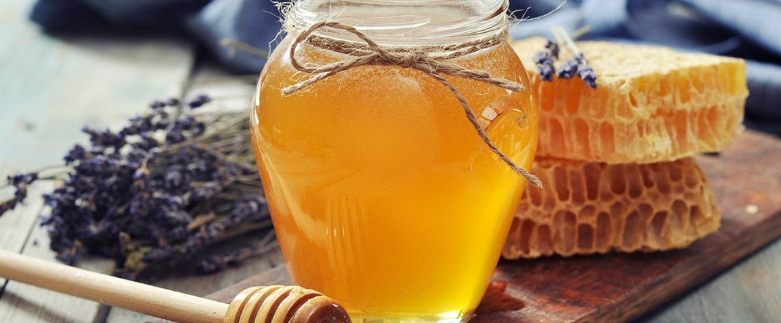 Das Gold der Bienen – Wissenswertes über Honig