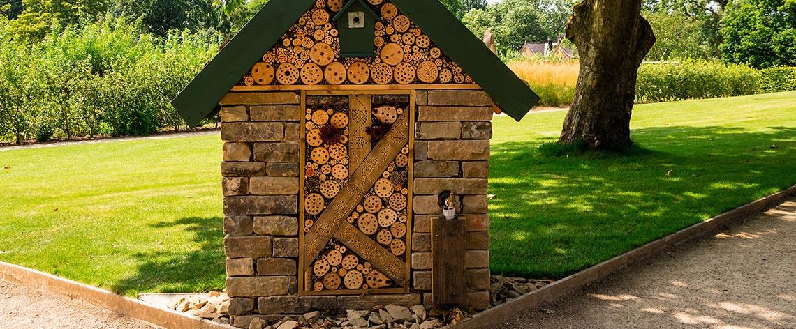 Tipps für insektenfreundliche Gärten und Balkone