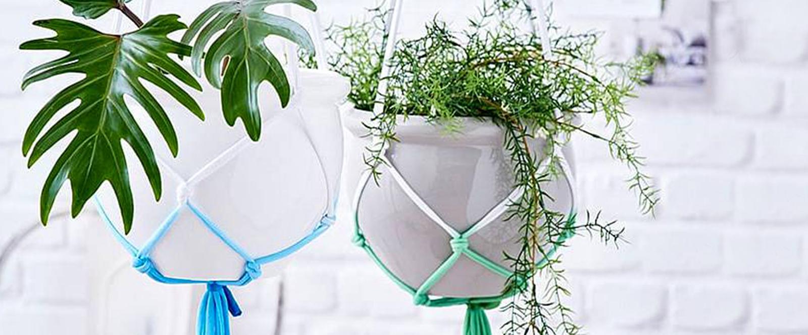 Blumenampeln selber machen - Indoor Gärtnern mit Kreativität